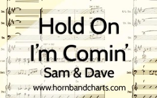 Hold-On-I'm-Coming-Sam-&-Dave