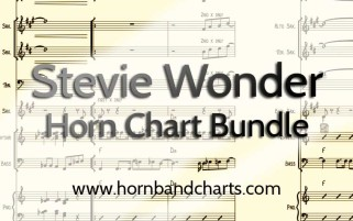 stevieWonderbundle